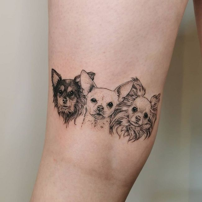 Triple Chihuahua Tattoo