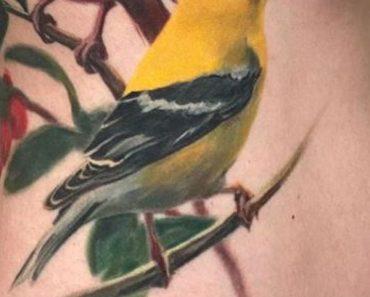 3D-Goldfinch Tattoo