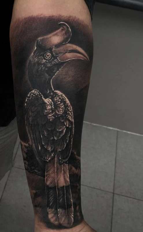 'Black and Gray Hornbill' Tattoo