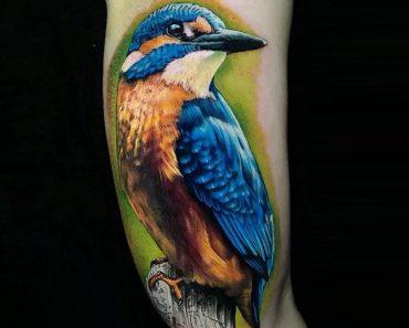 Realistic Kingfisher Tattoo