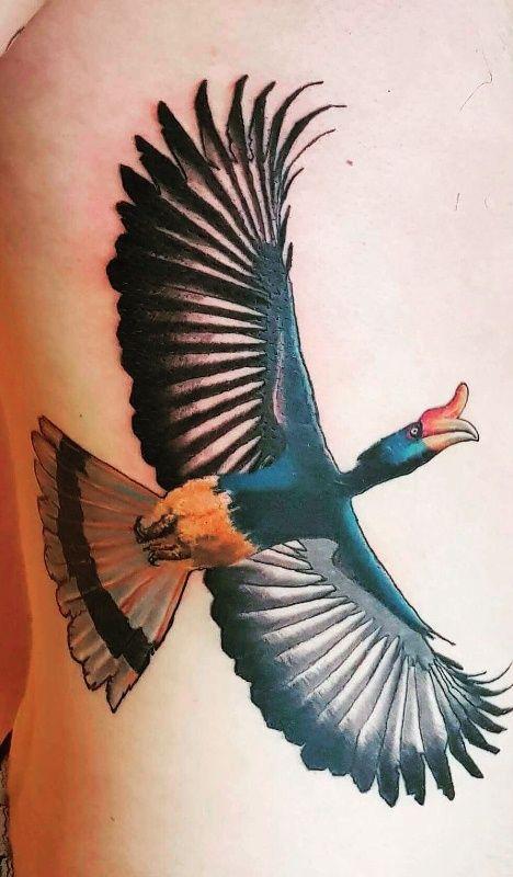 Rhinoceros Hornbill Tattoo