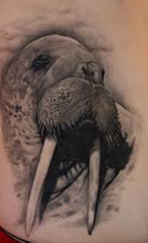 Walrus Face Tattoo